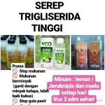 herbal trigliserida, herbal untuk trigliserida tinggi, pengobatan herbal trigliserida, herbal buat trigliserida, herbal penurun kadar trigliserida, herbal penurun kolesterol trigliserida, herbal trigliserida tinggi,